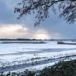 Er zit sneeuw in de lucht, Gert Buchner