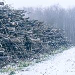 Bijna winter …