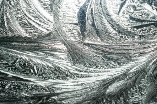 winterlandschap-3660