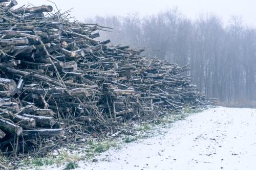 winterlandschap-3693