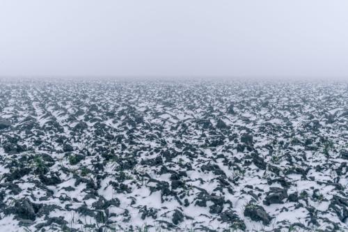 winterlandschap-3697